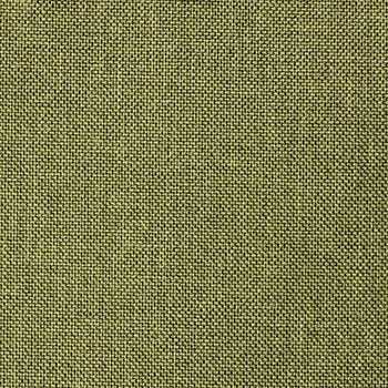221-Flashtex-Olive-Green