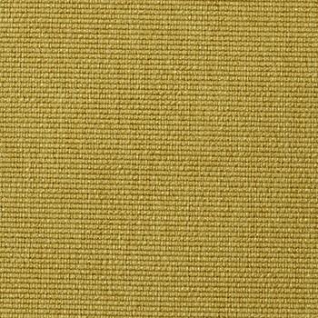 554-Soft-Mustard-Flower